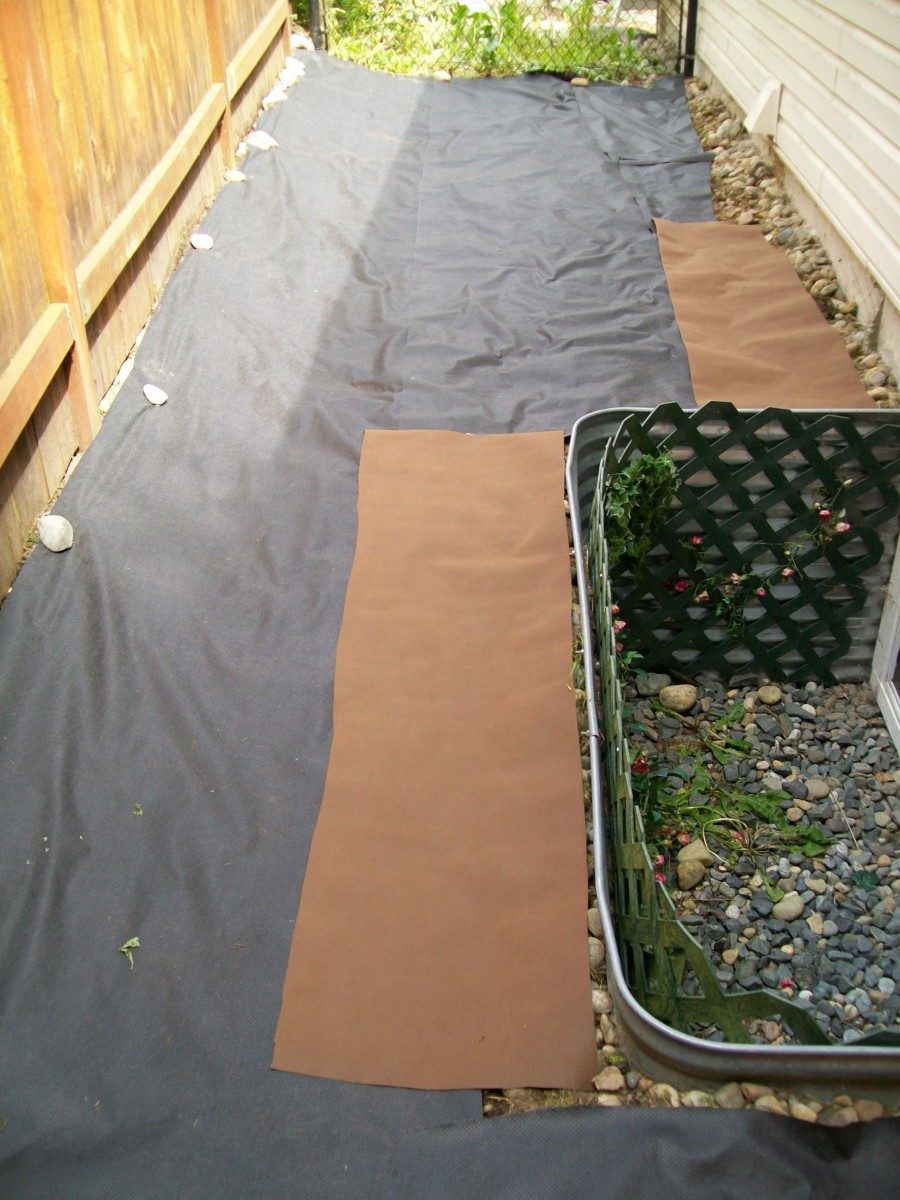 Adding the landscape fabric.