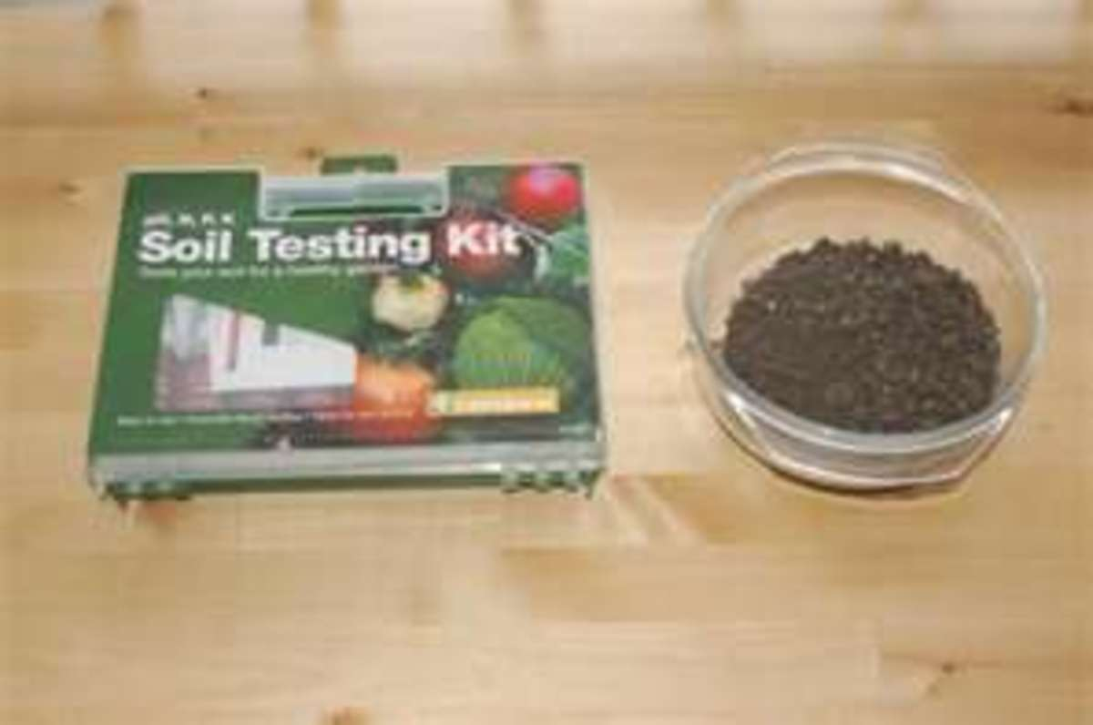 Alternatively, you could test your soil samples yourself using a store-bought kit.