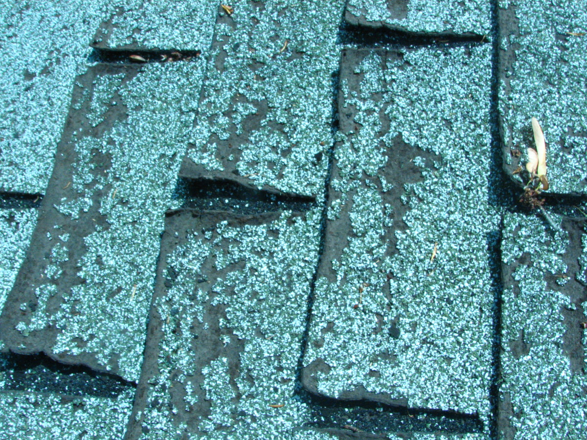 curled edges on the old roof shingles