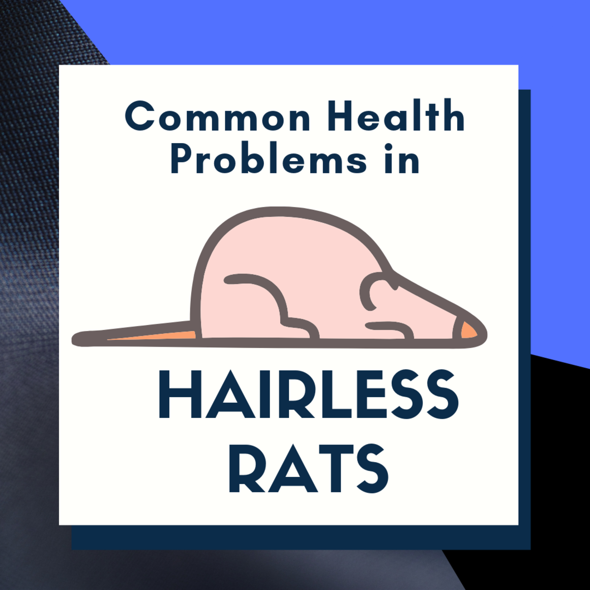 Health Problems in Furless Rats
