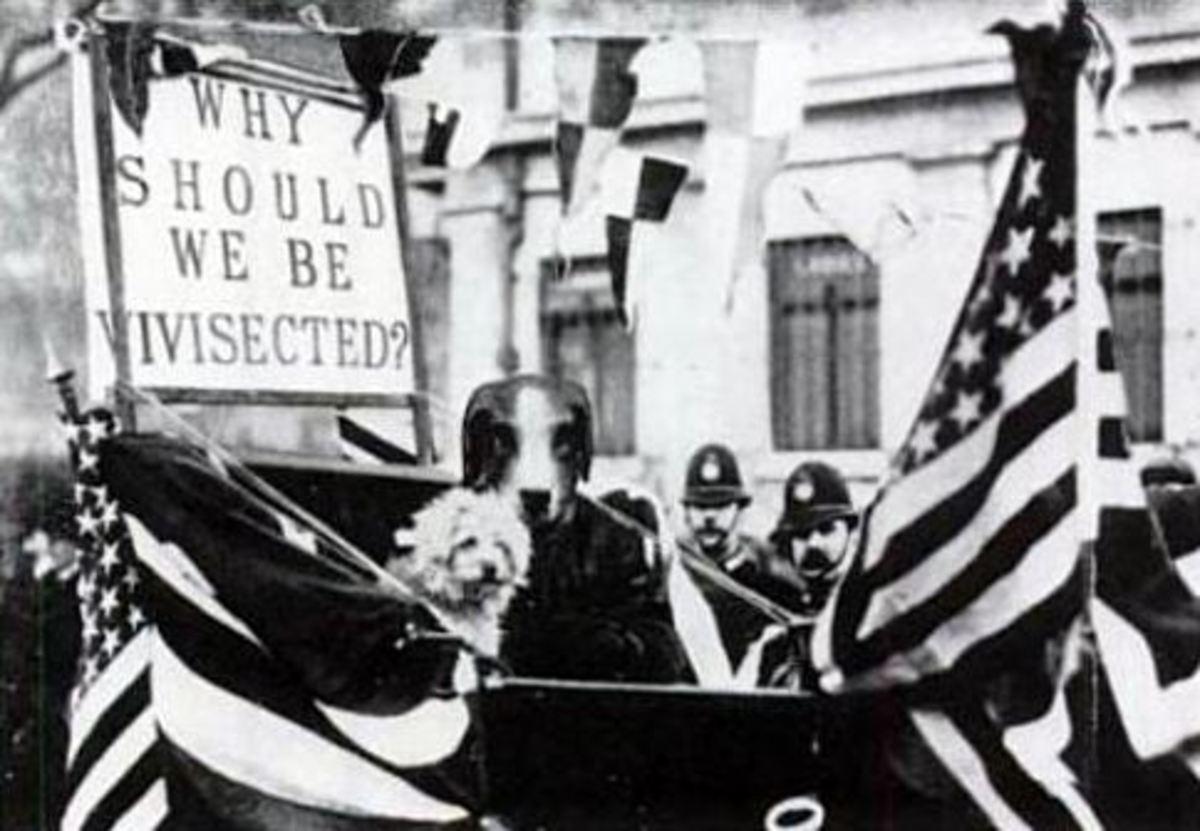 Demonstration Against Vivisection in 1910