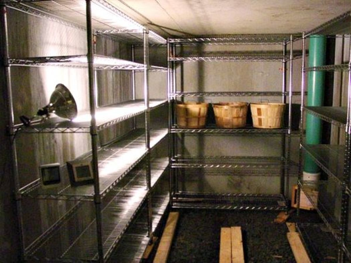 Completed root cellar with shelves