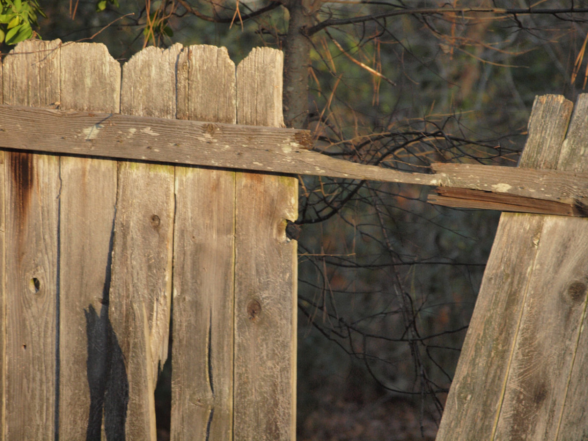 When a fence panel is blown out during a storm, it may bend or be thrown to the ground. Check for loose nails or battens and secure them before beginning the replacement.
