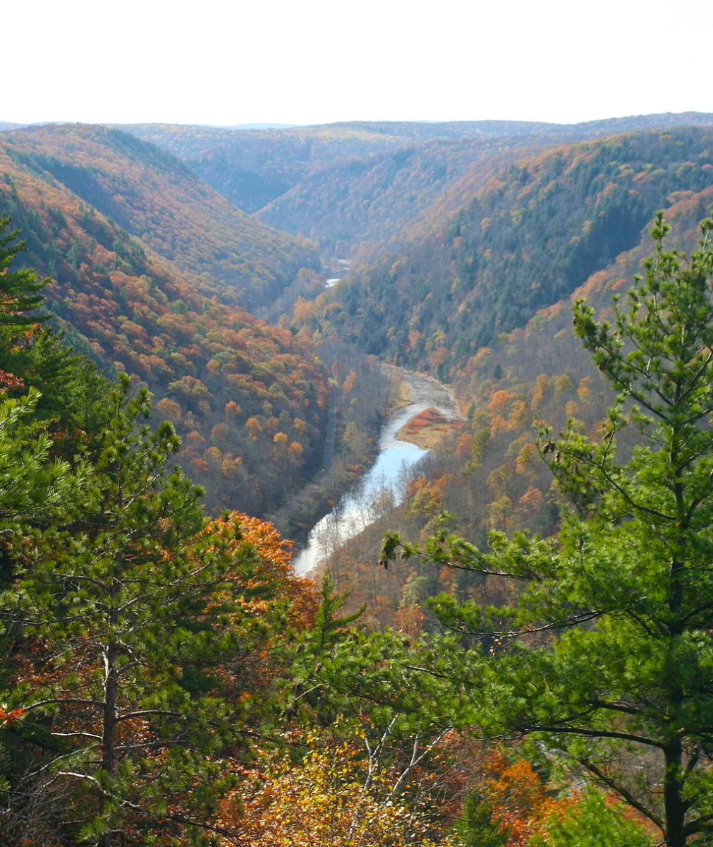Pine Creek Gorge, the Grand Canyon of Pennsylvania, in autumn.