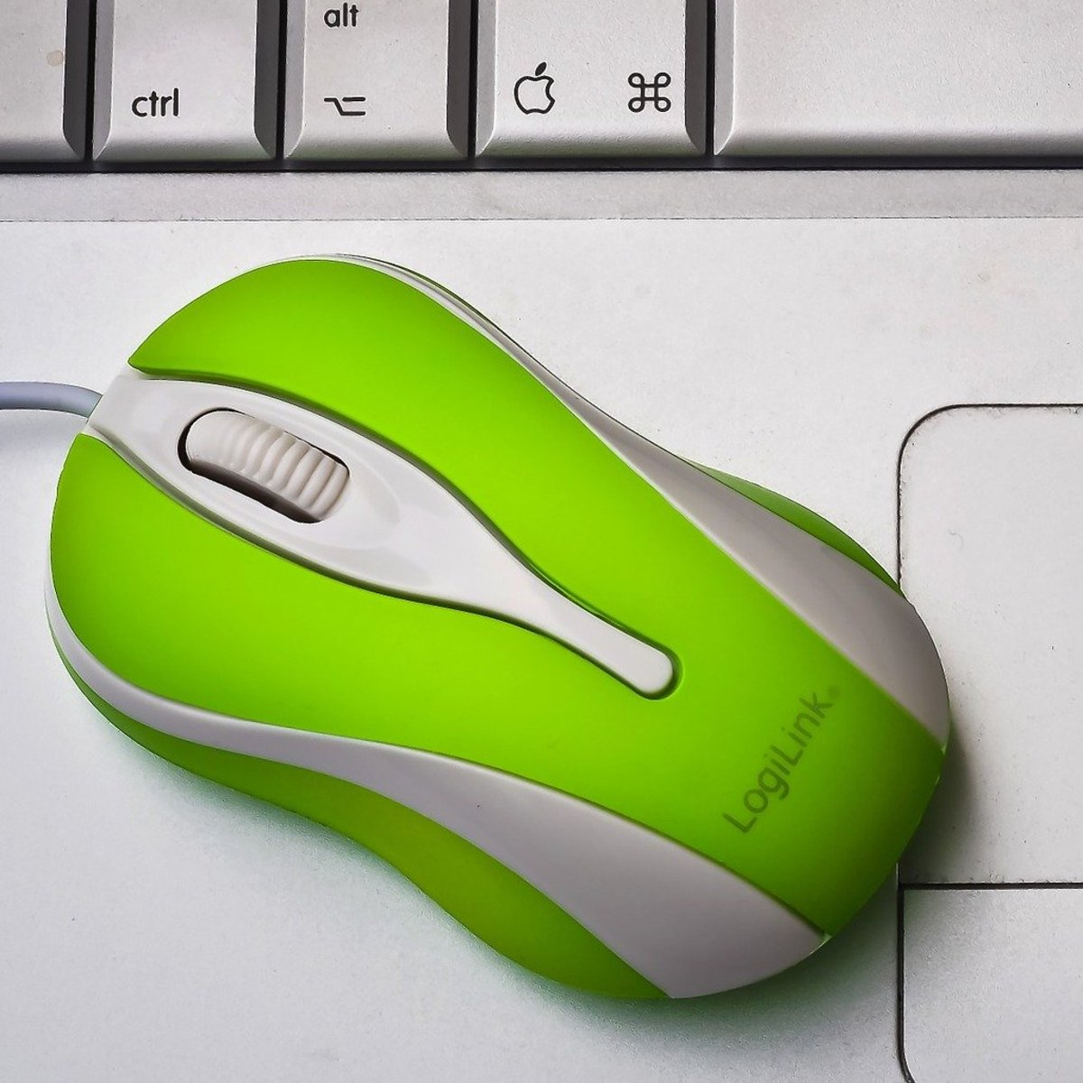 Help I Cant Scroll With My Mouse Turbofuture
