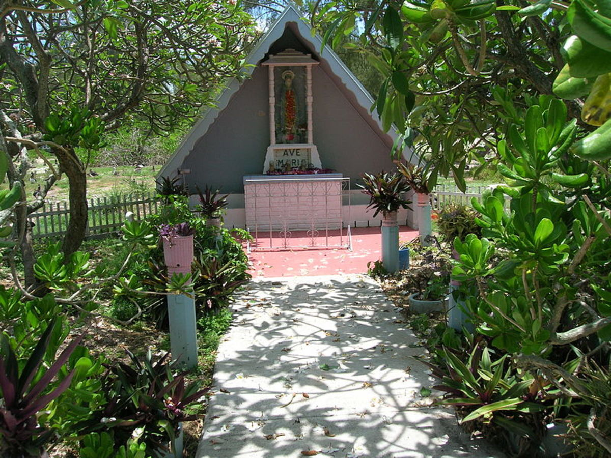 Moses in the Cradle can be grown outdoors in tropical areas.