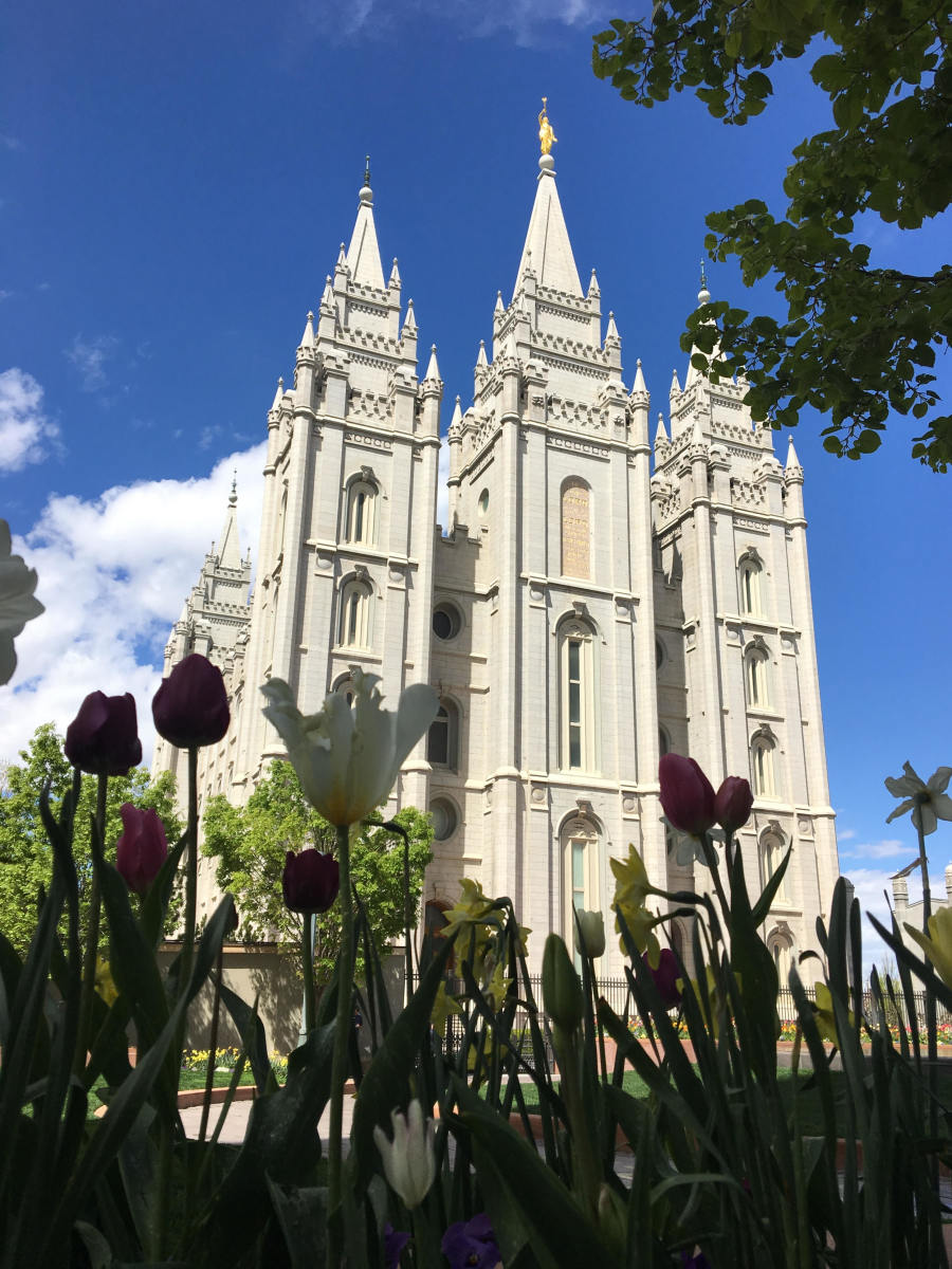 What Happens in Temples of The Church of Jesus Christ of Latter-Day Saints?