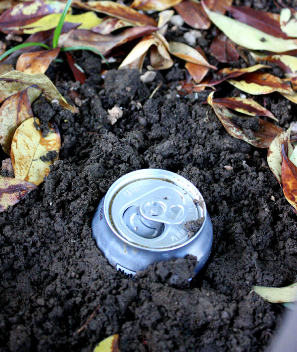 Remember to dig before you start drinking!