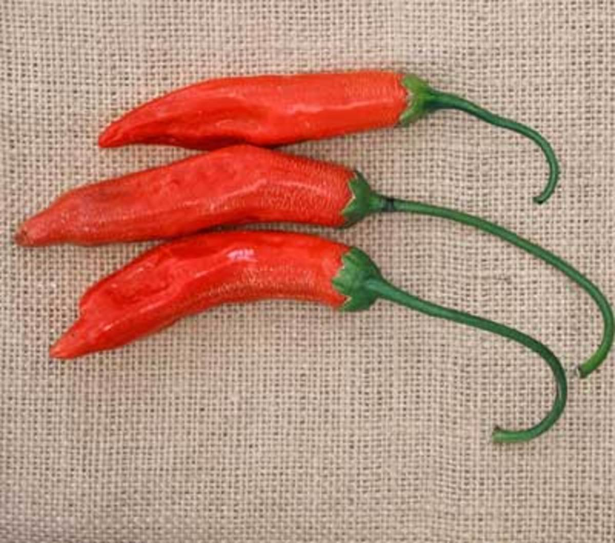 Aji Red are very hot 3- to 5-inch orange-red peppers that are generally dried into powder for use in sauces and stews. A Capsicum baccatum type with 30,000 to 50,000 Scoville units.