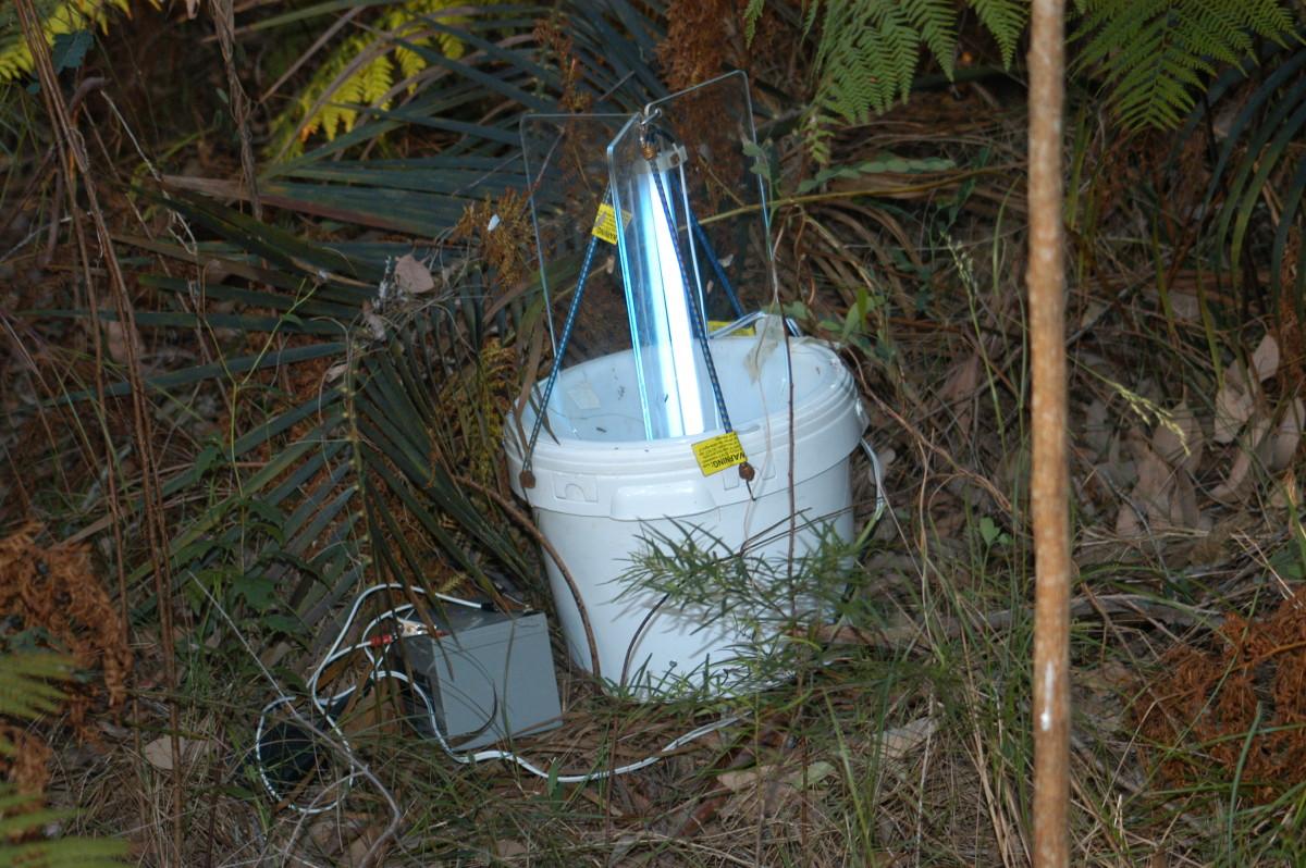 Light traps emit a UV light that attracts flies.