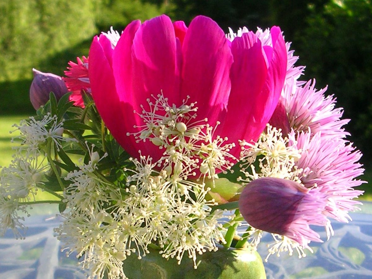The airy pastel quality of the chive flower blends with peony and climbing hydrangea.