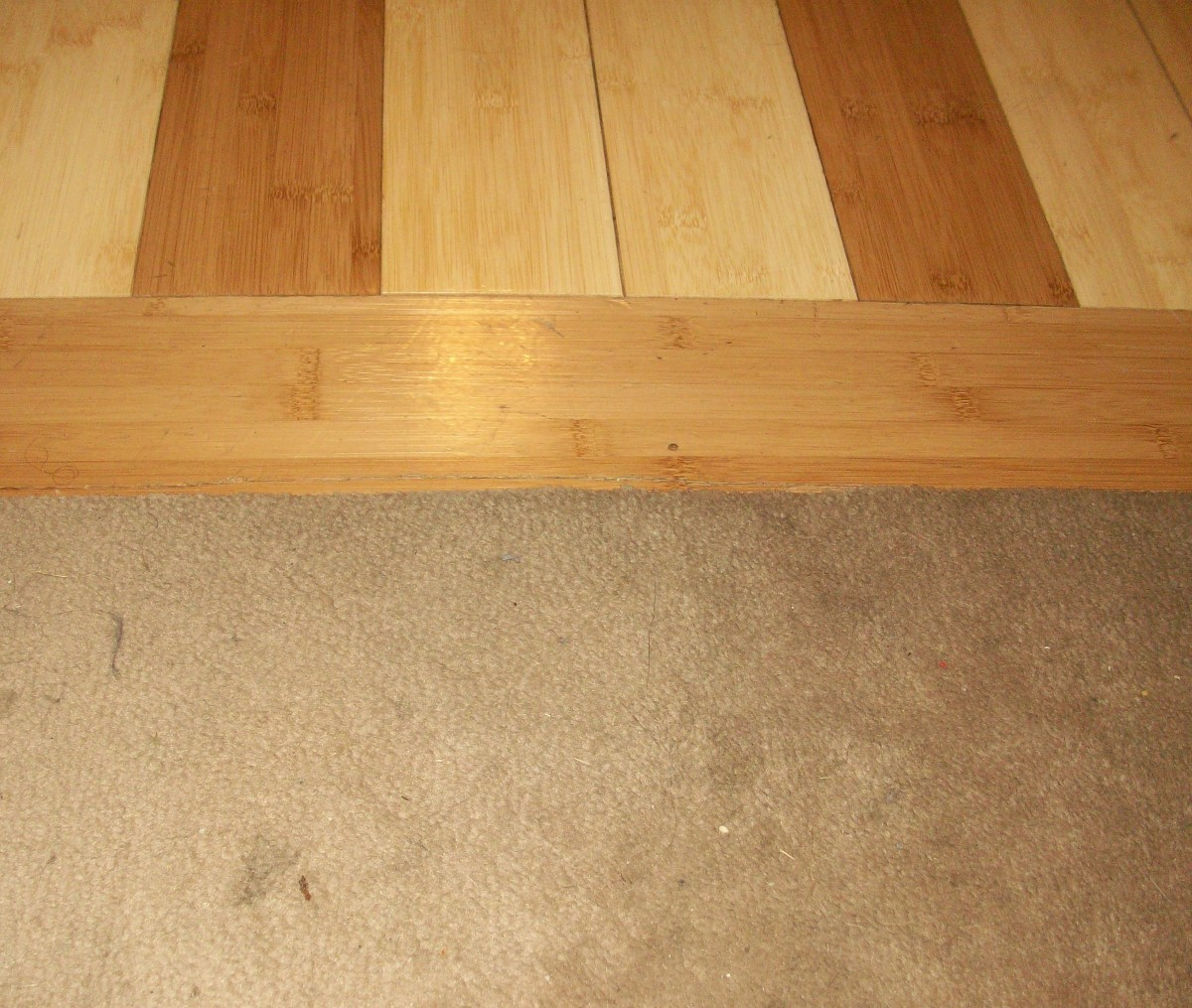 No trim; carpet tucked into the flooring groove