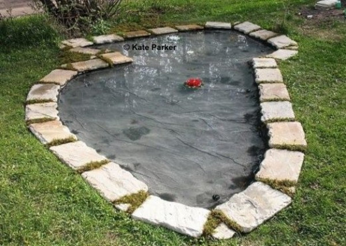 How to build a reflecting pond dengarden - Building a garden pond step by step extra aesthetics and value ...