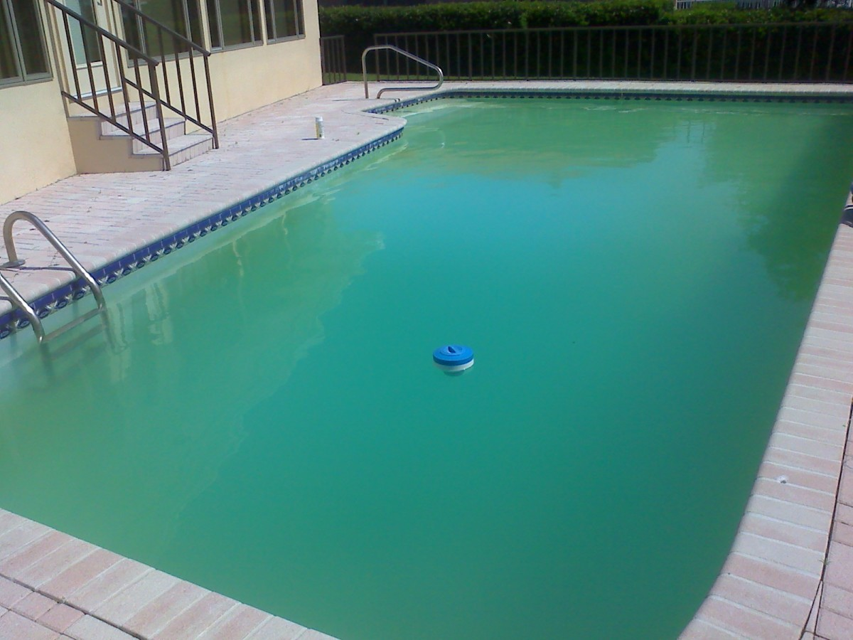 Green Pool Water : How to clean a green and cloudy pool with filter using