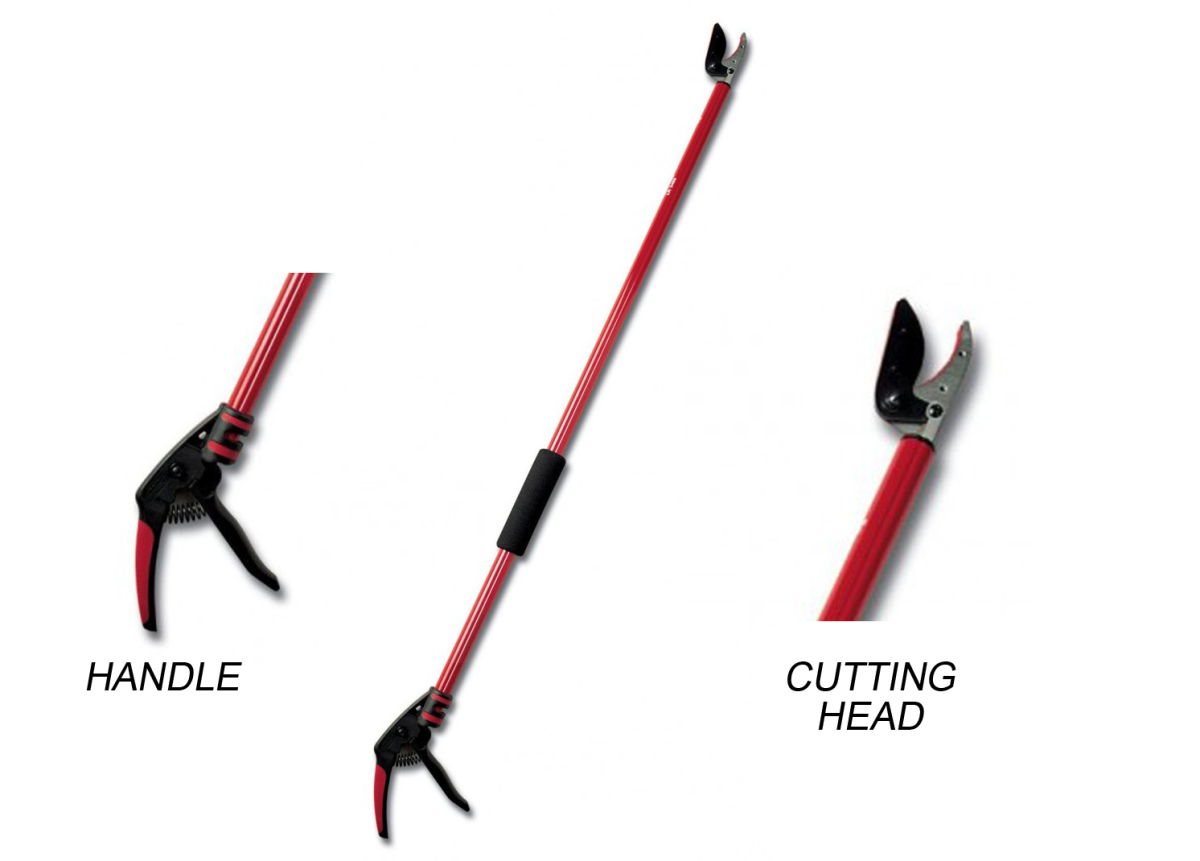 Bypass pruner from Corona.