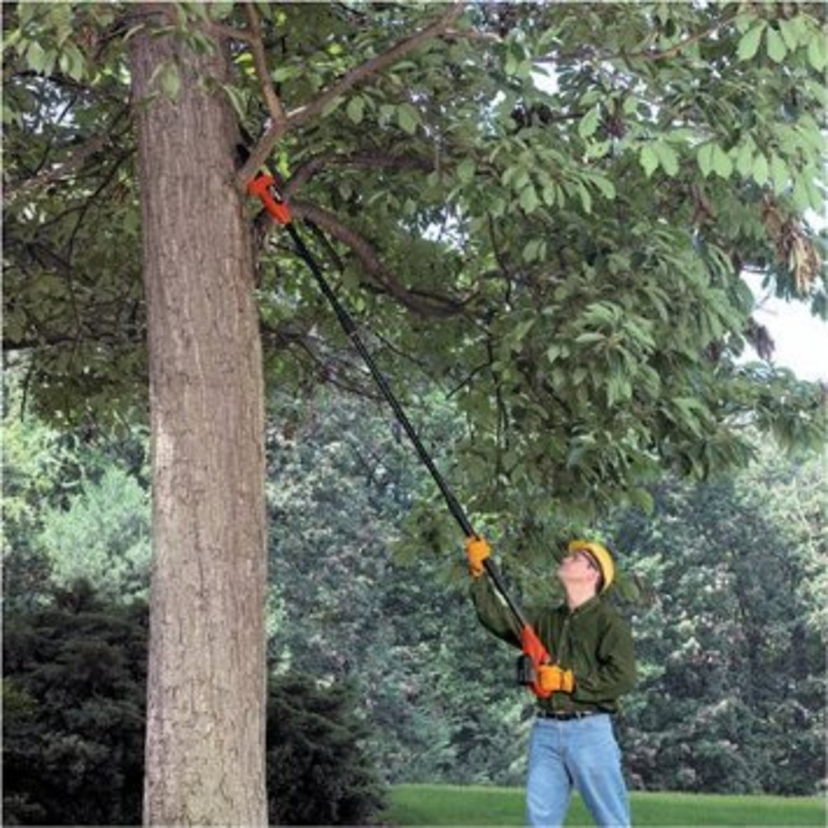 The Best Electric Pole Saws Dengarden