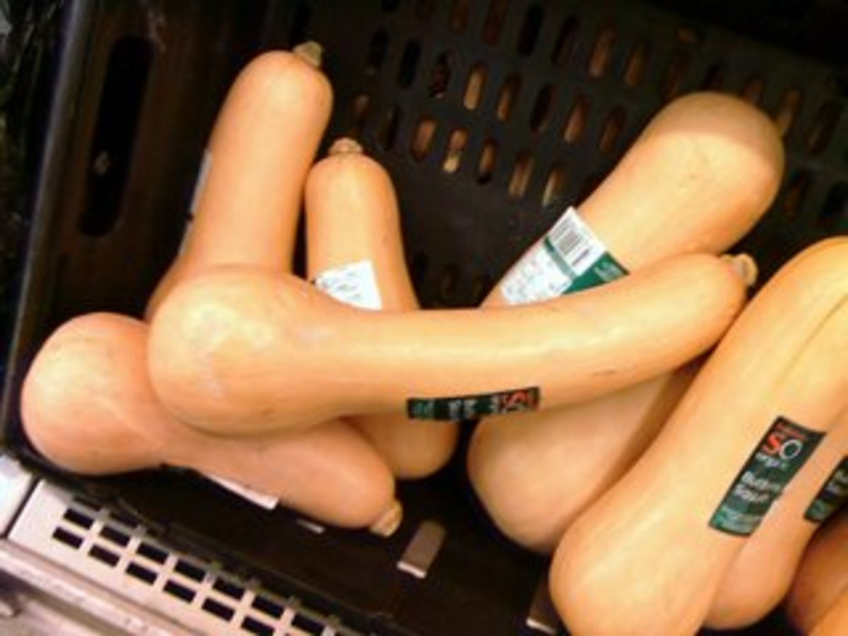 How to Grow and Store Butternut Squash
