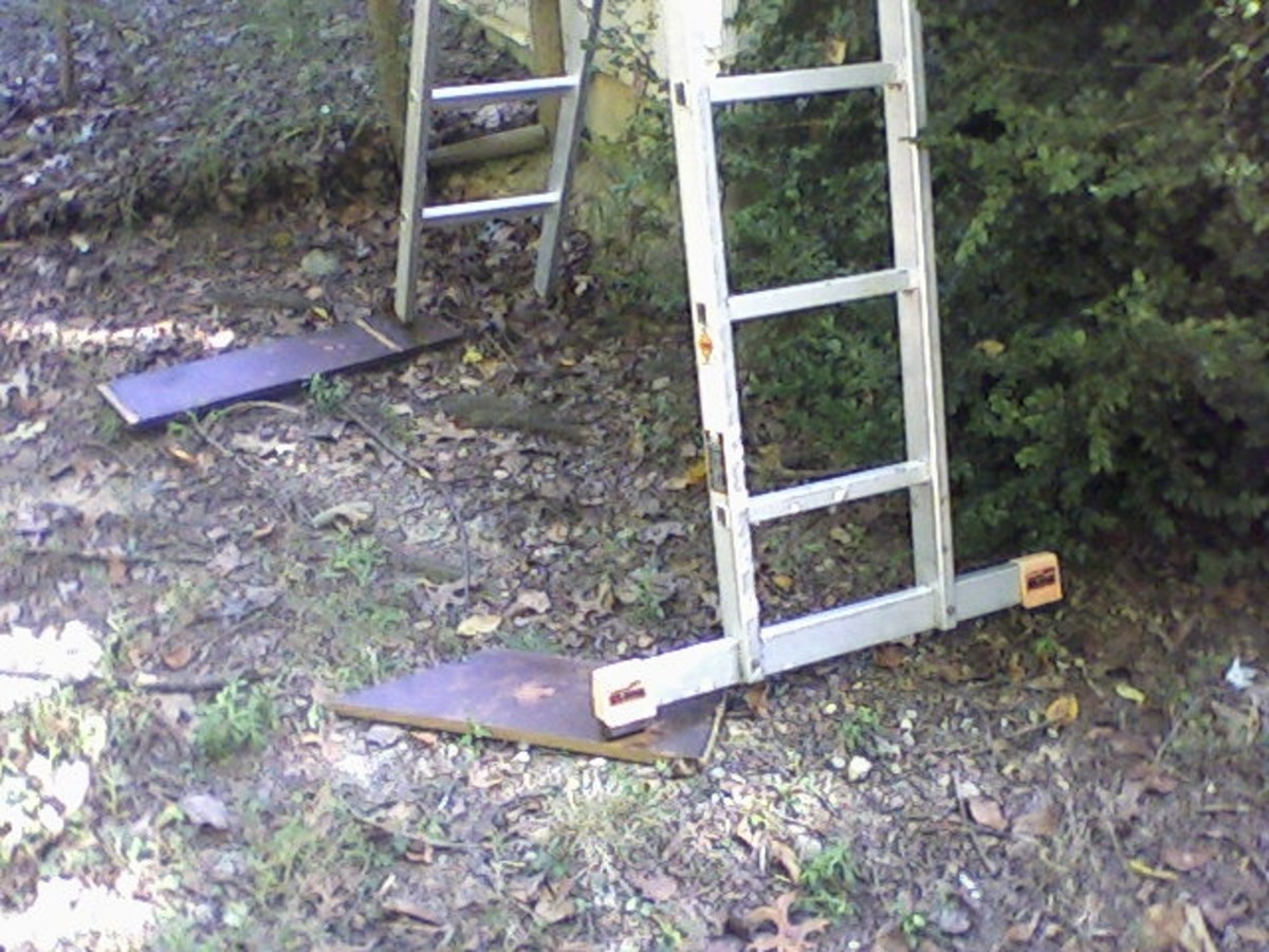 Ladder--fix.