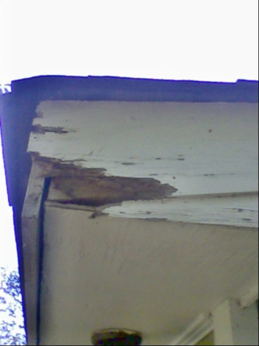 "The obligatory ""before"" picture.  The corner of the fascia board has rotted away."