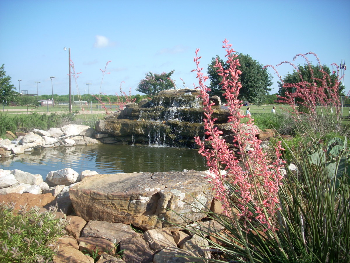 The pond at Bluebonnet Park in Kenedy, Texas.