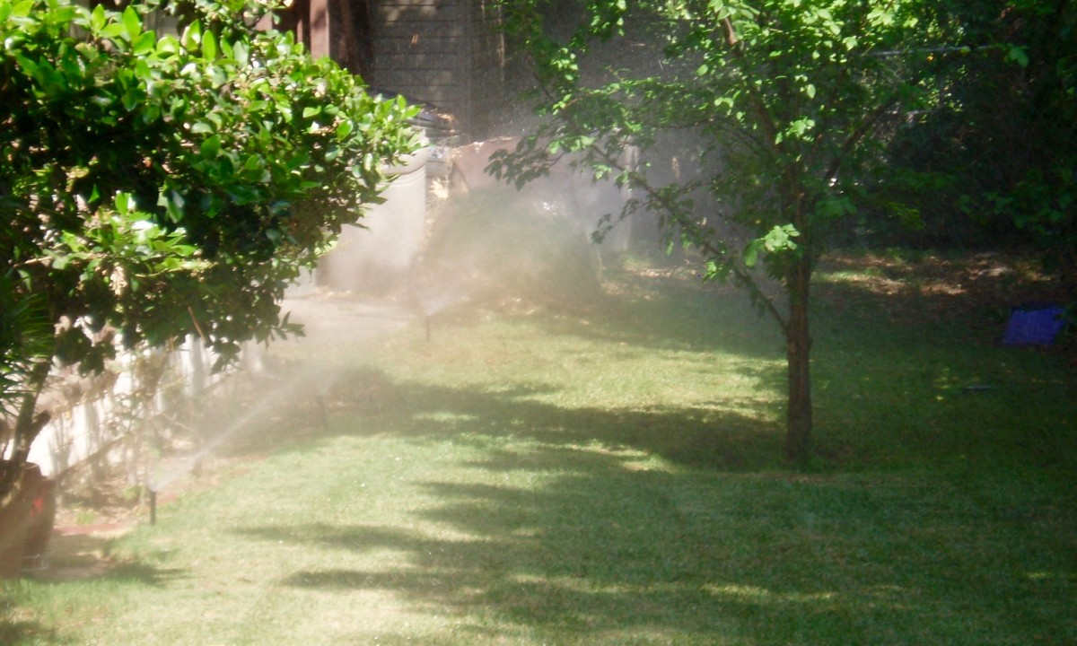 Spray head nozzles in operation. Note the continuous spray that saturates the lawn. This lawn is small and protected, so runoff is not the problem that lawns on a bank would be.