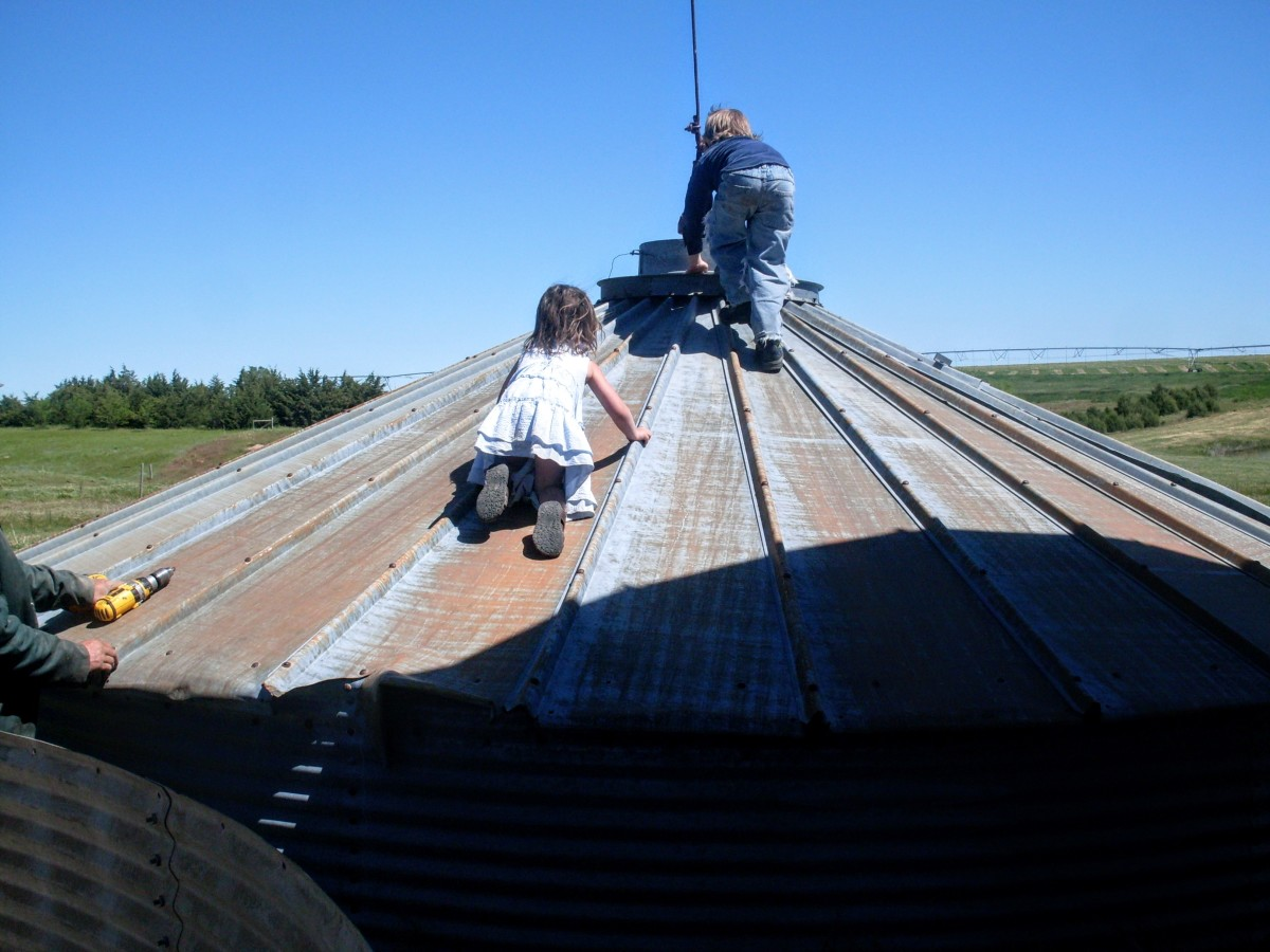 My kids, who have been on grain bin building sites nearly all their lives, can't resist a lowered roof.