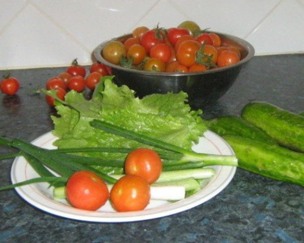 Tomatoes, Lettuce, Scallions and Cucumber Grown in my Garden