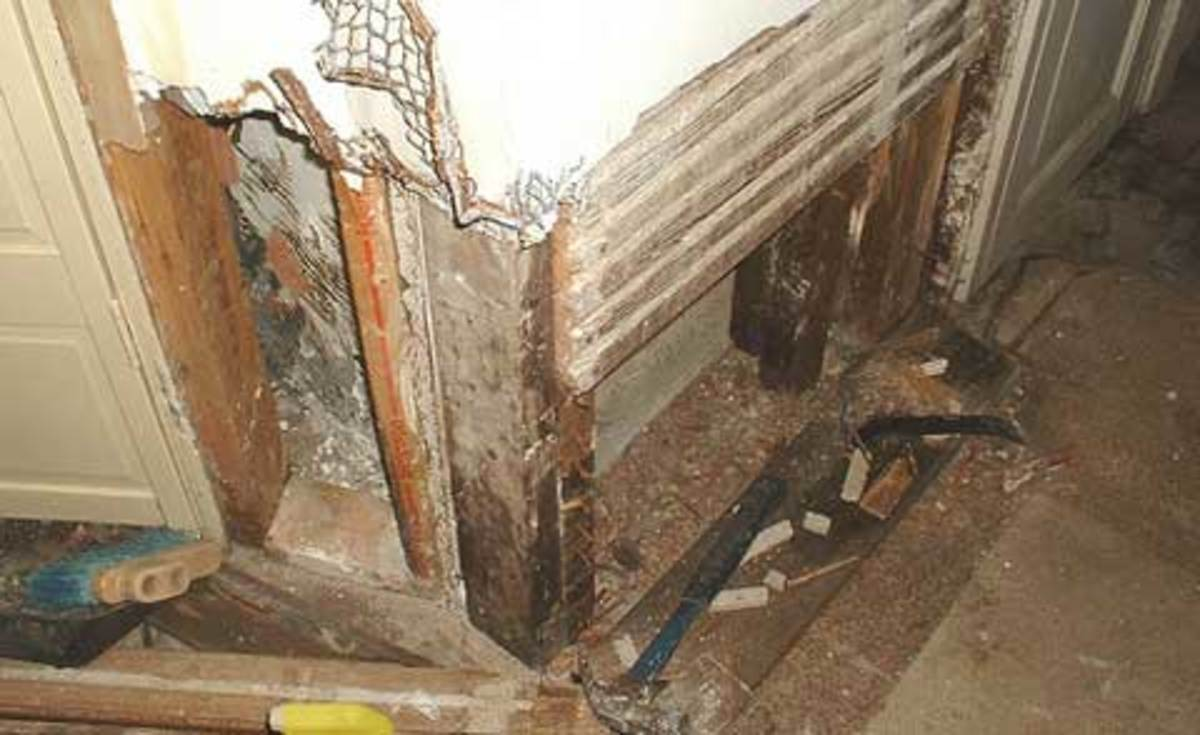 Termites can do lots of damage to your home!