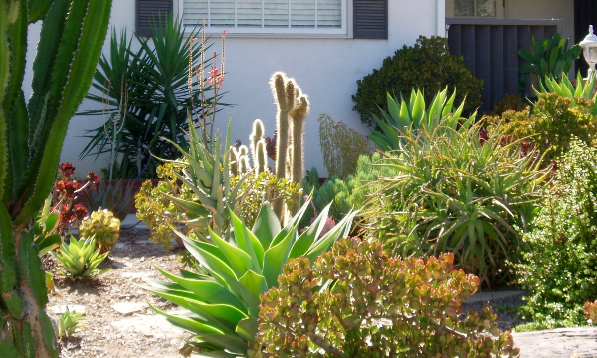 This cactus/succulent garden reflects the Southwest Desert style, and is wholly appropriate for Southern California. There are quite a few houses in my neighborhood that have elements of this style.