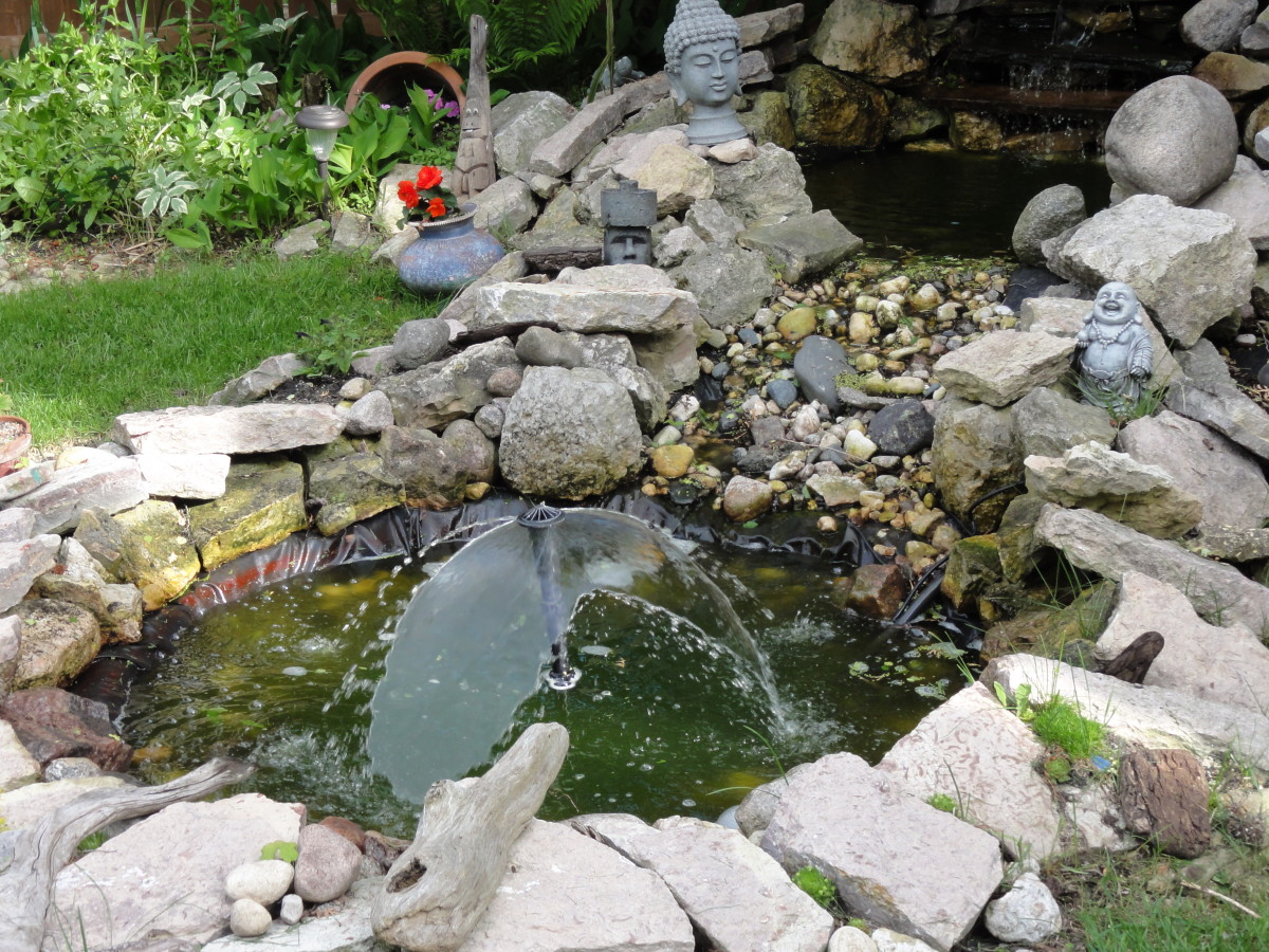 Lower Pond - Where the Pump Does Its Work