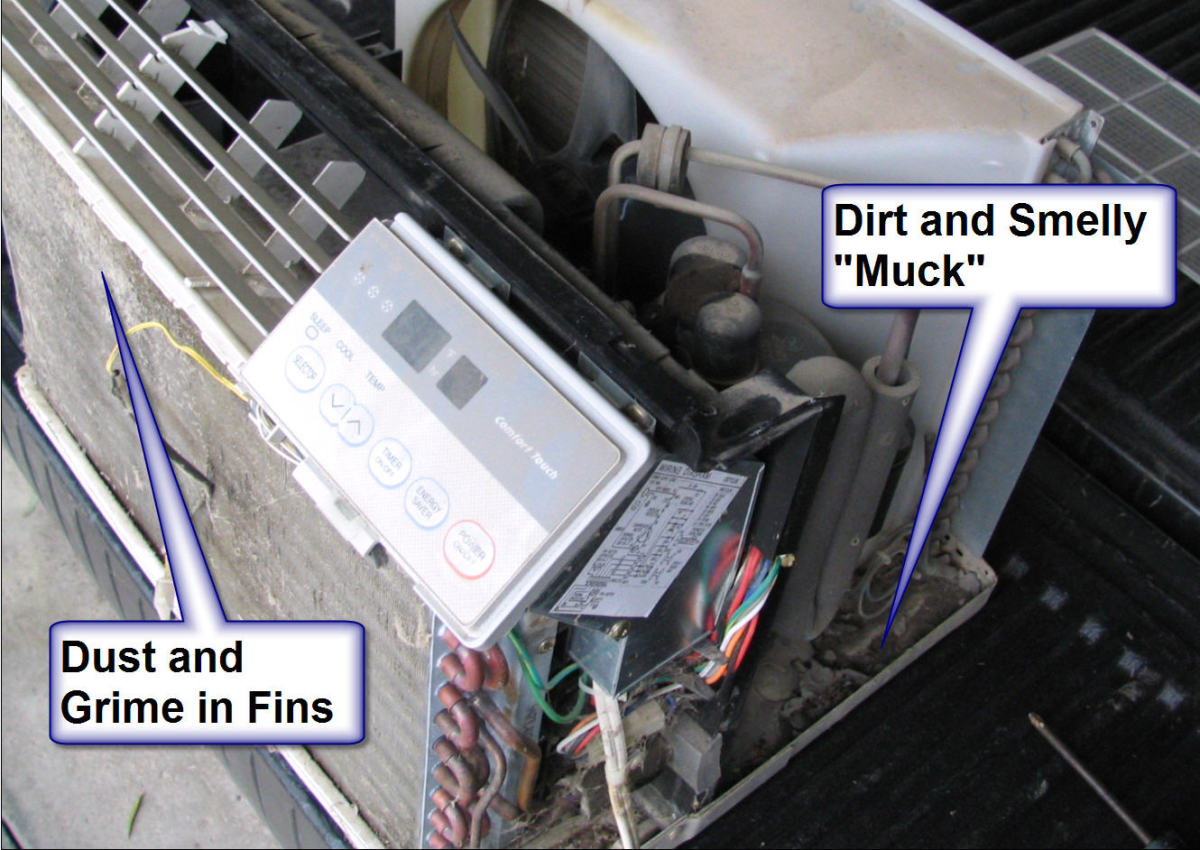 Muck and mold can grow in the drip tray, and dust can get caught in the aluminum fins of the AC.