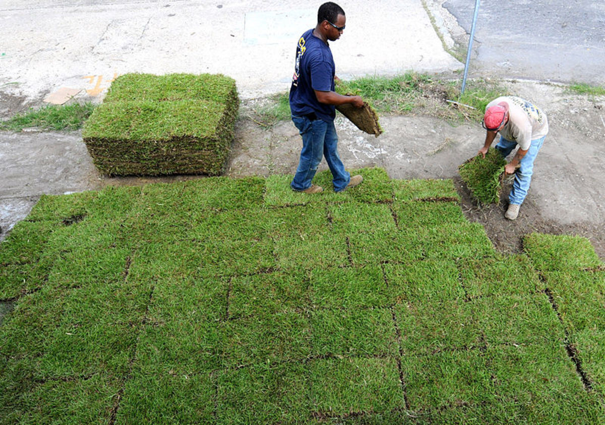 Lay sod in a brick-like pattern where the seams won't meet up.