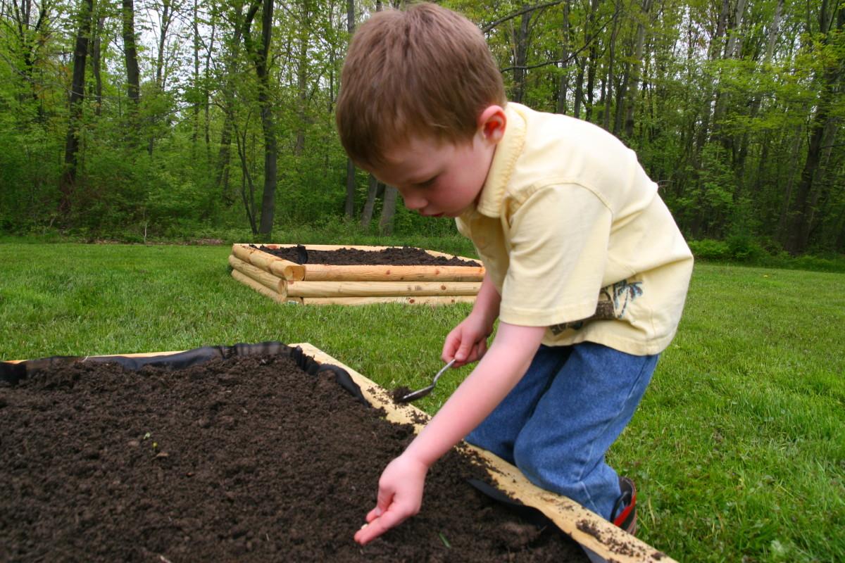 Our son, planting Orange Tendersweet watermelon seeds.