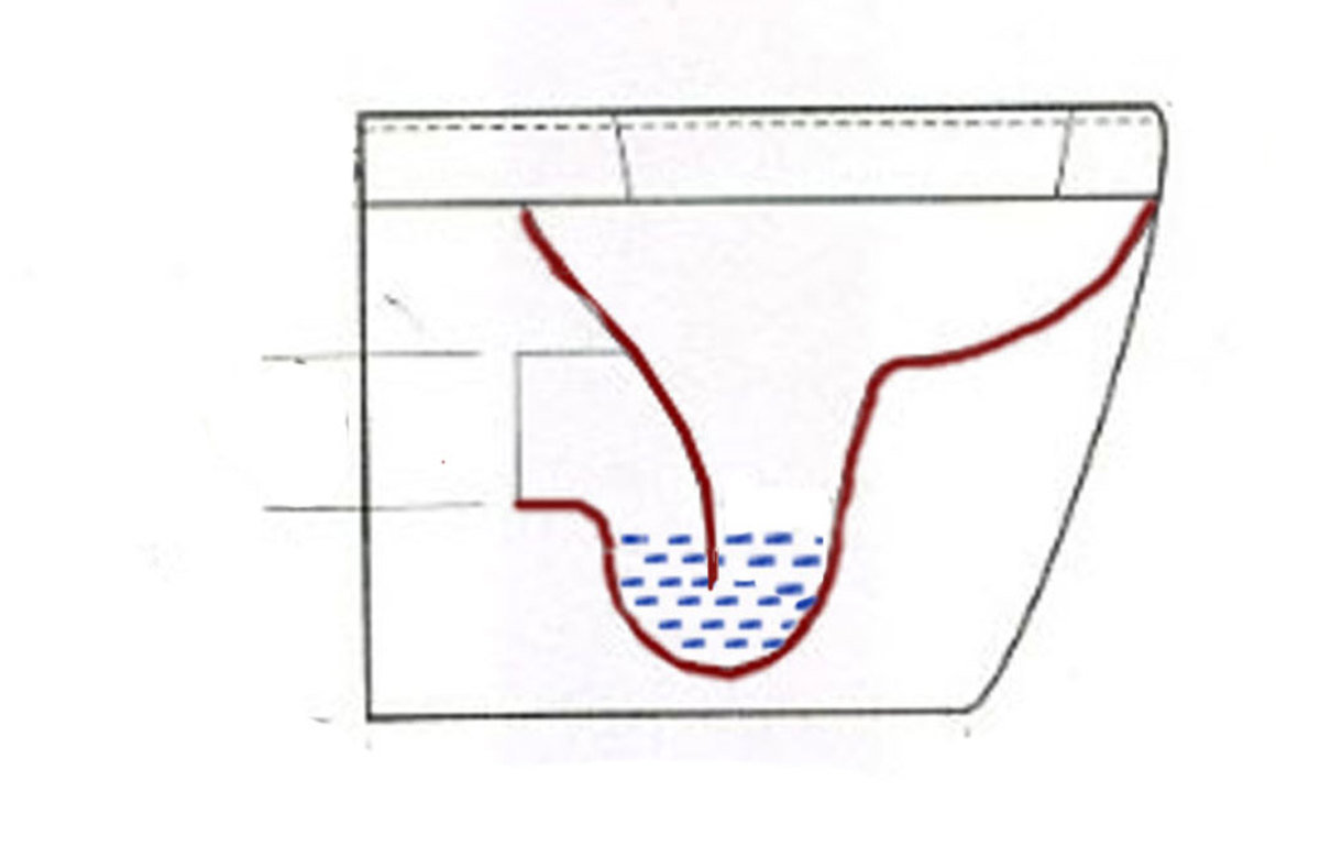 Toilet trap