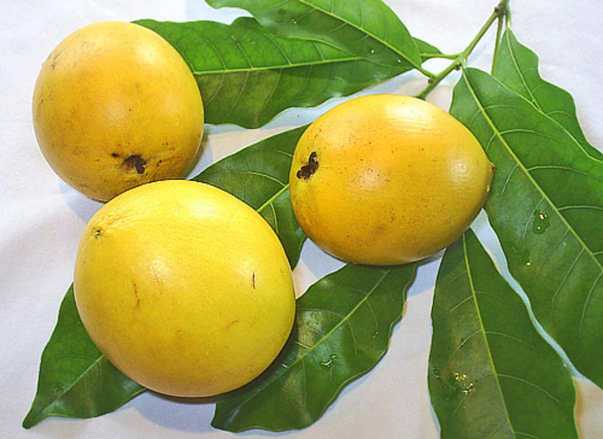Abiu fruits