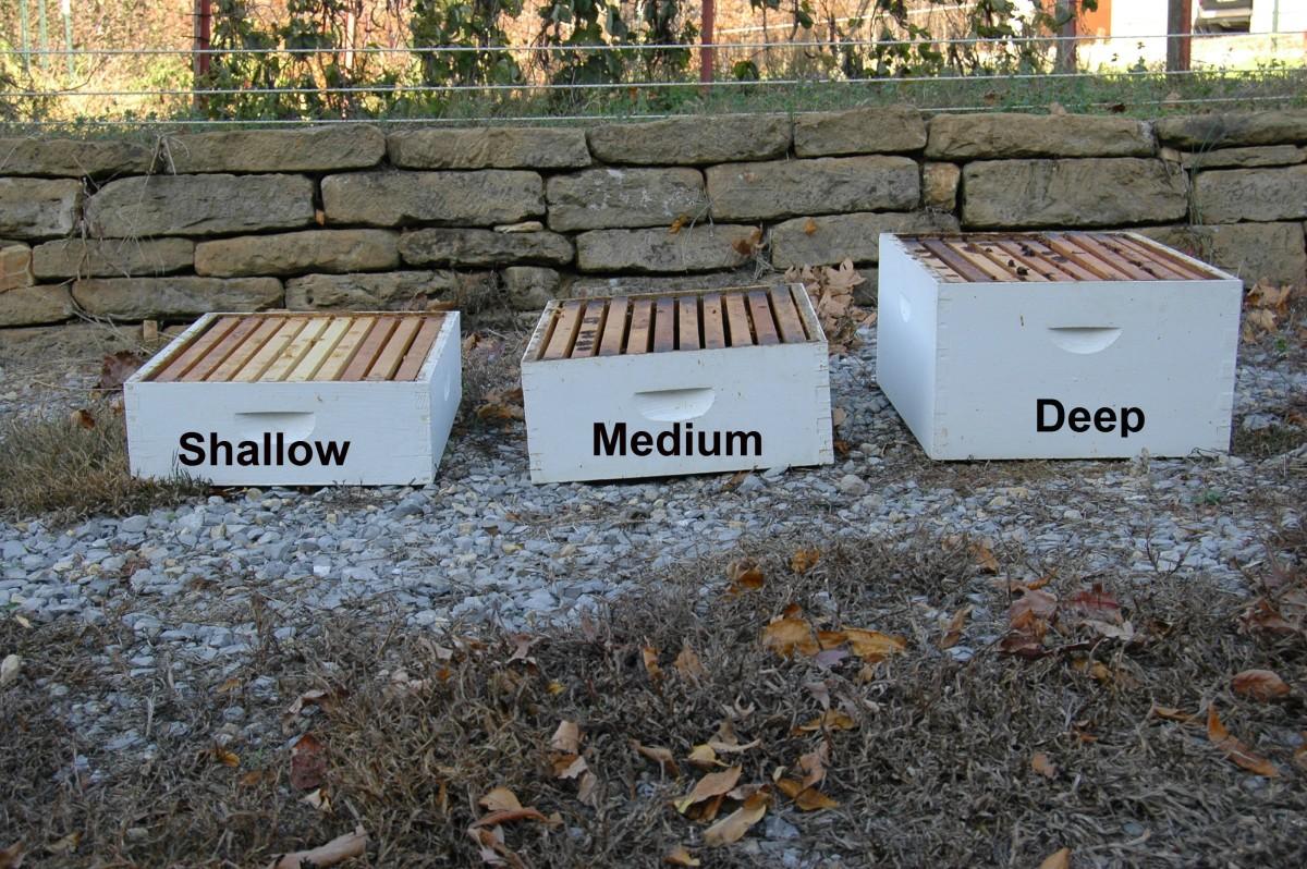 Ten Frame Boxes: Shallow, Medium, Deep