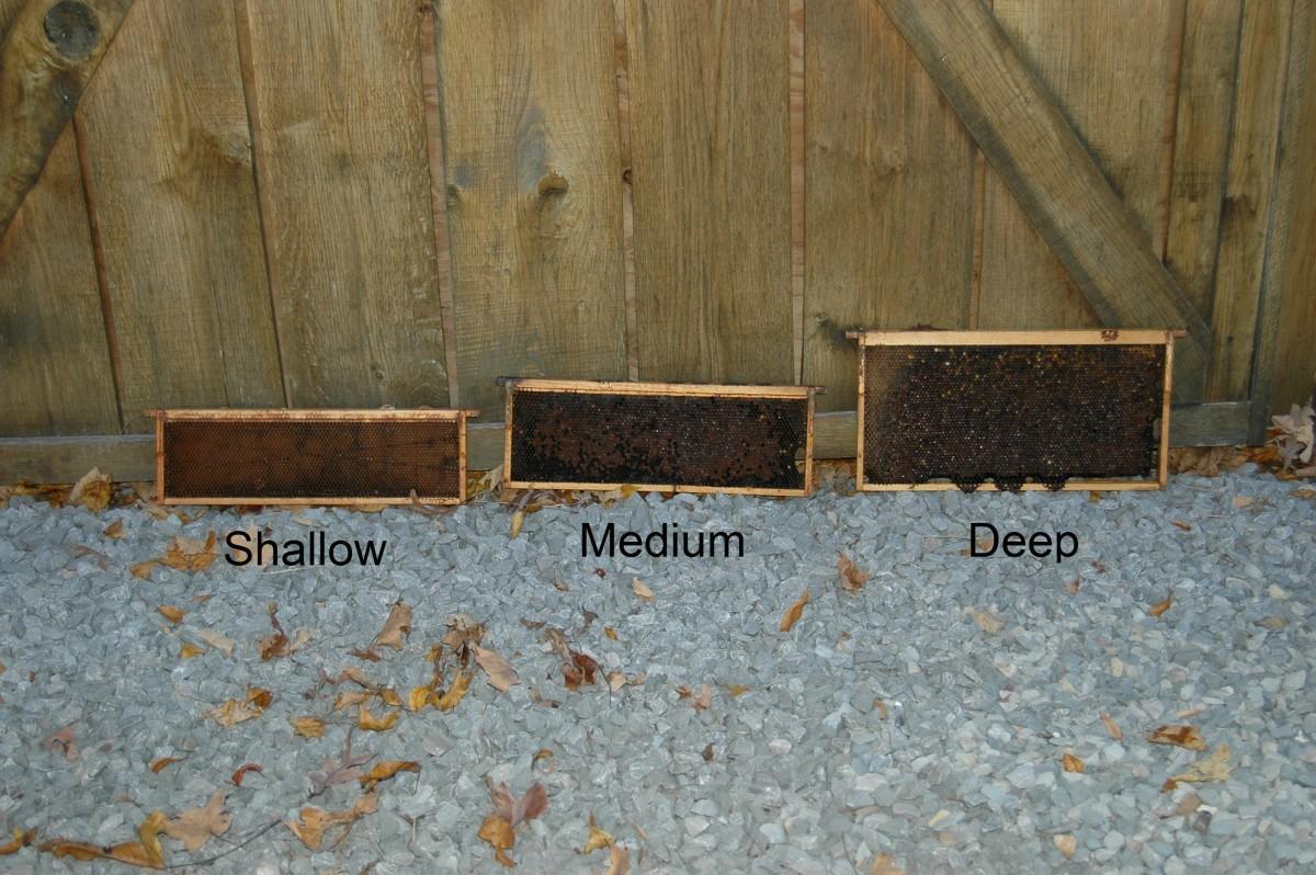 The Three Standard Frame Sizes