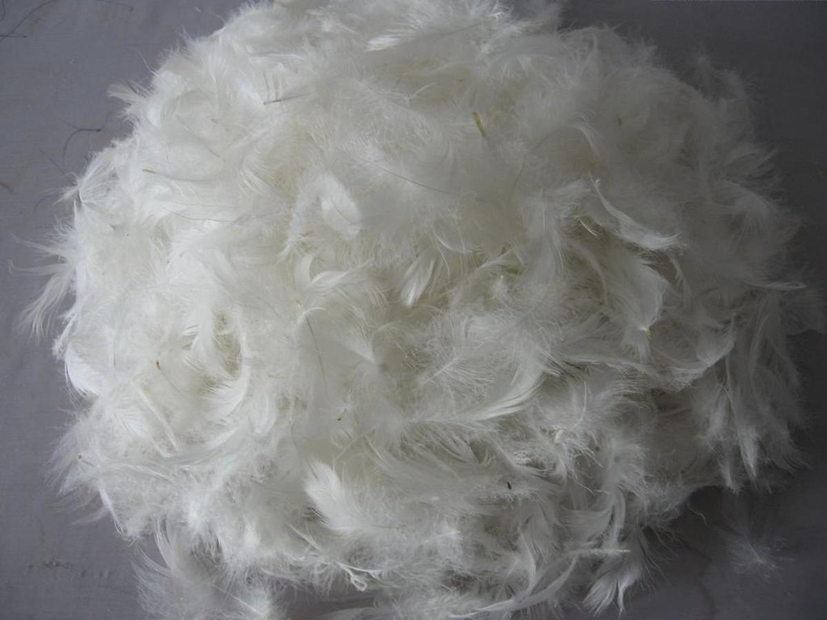 Memory Foam vs. Latex vs. Feather Pillow Comparisons