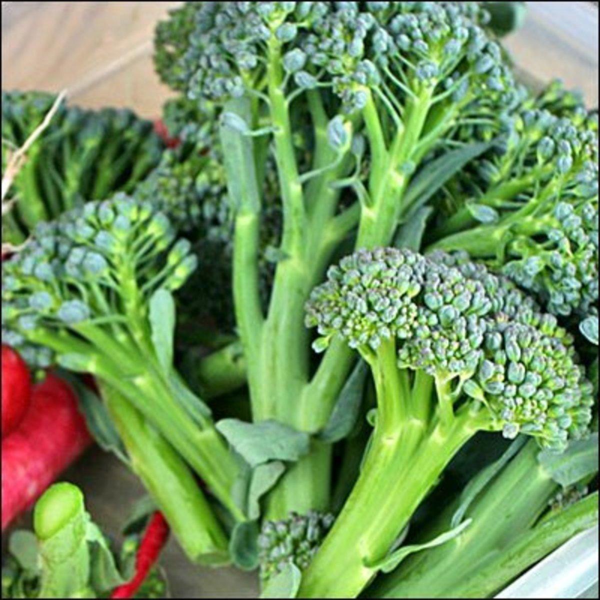 Freshly harvested broccoli florets.