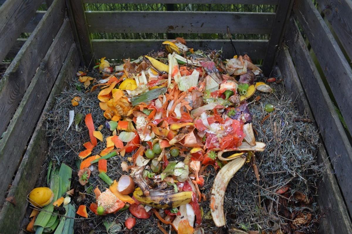 Slatted timber compost bin