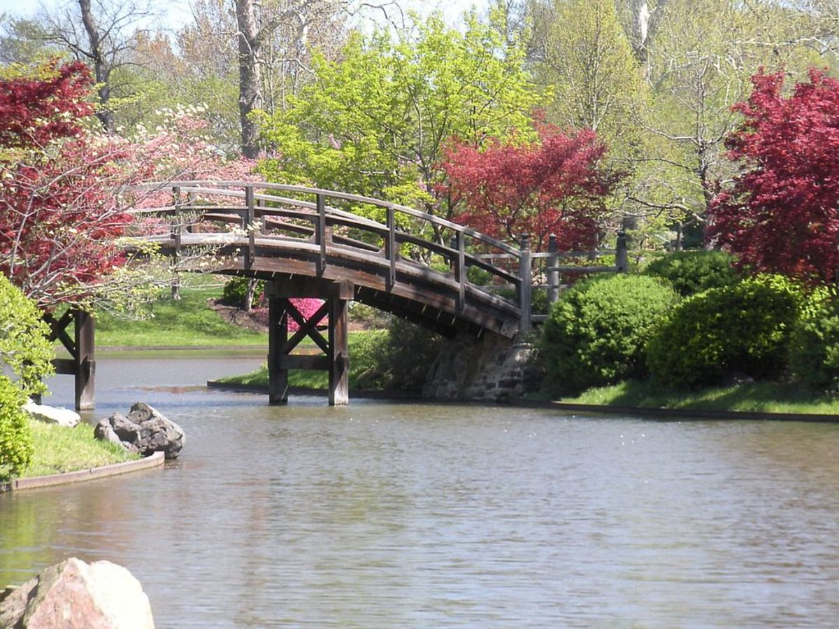 A bridge in a Japanese Garden.  One other way to showcase water is with beautiful ponds.  Click on image to see it larger.