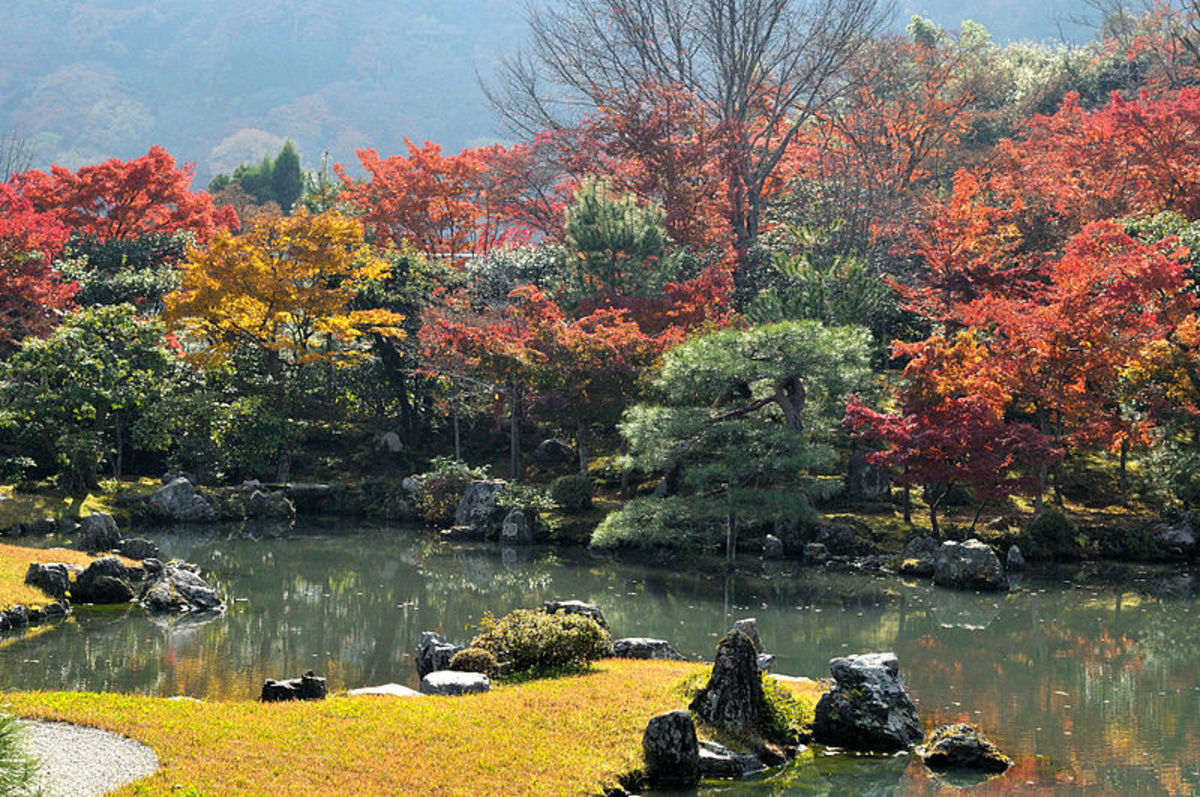 A Japanese Garden at Tenriu-ji, Japan