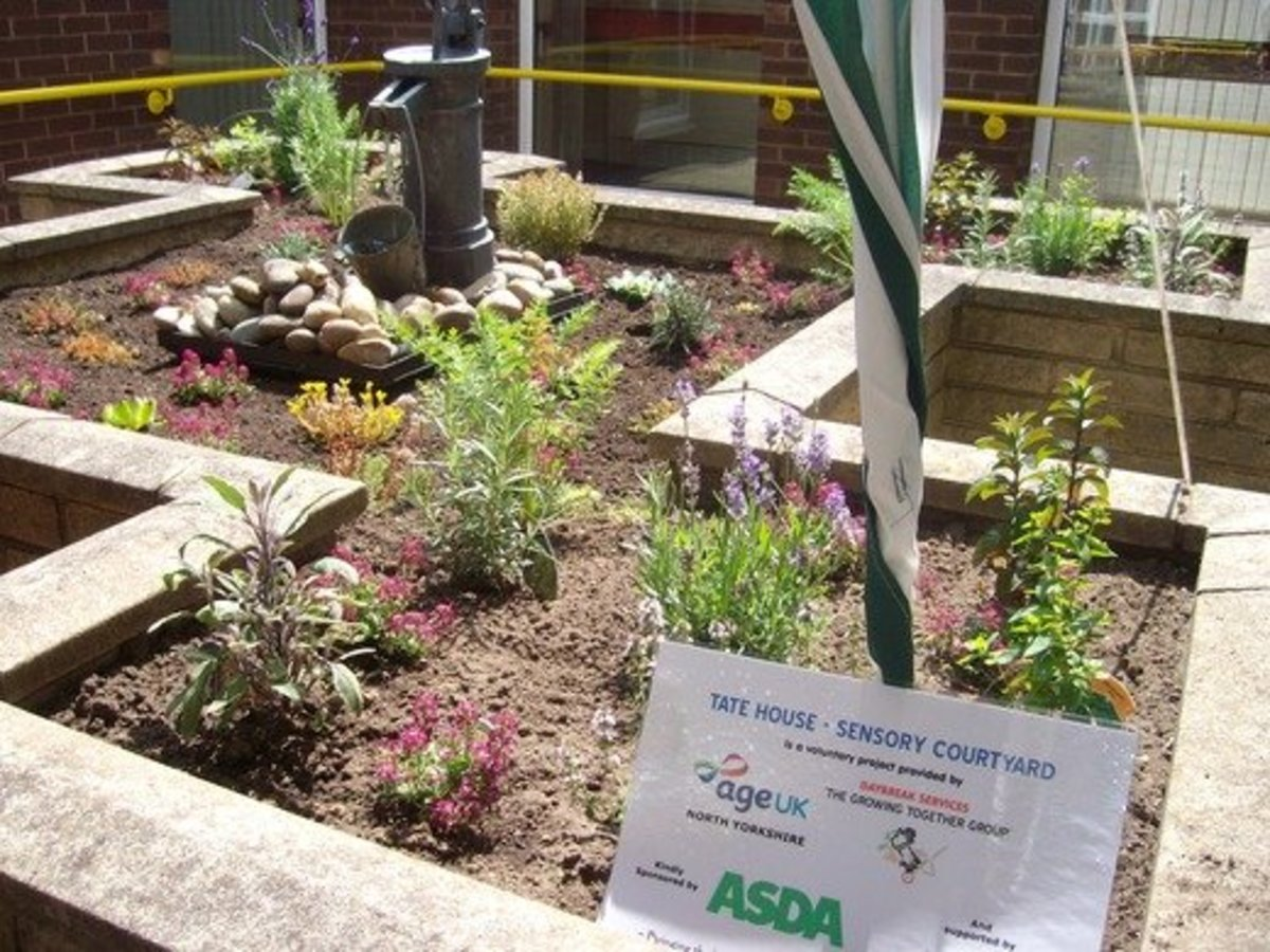 Asda helps Age Concern grow a sensory garden for the blind and partially sighted in Harrogate, UK