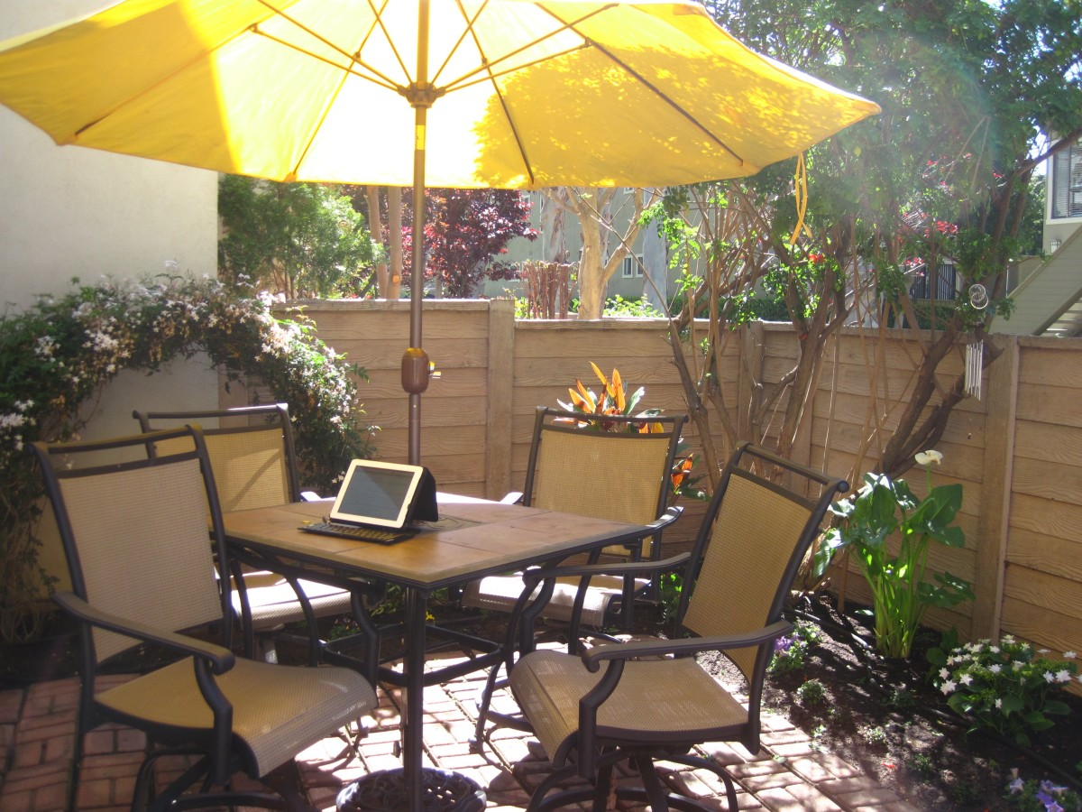 This side of the patio doesn't get much light, but enough that I need shade for sun protection. I can lower the umbrella when I leave to give more sun to plants. (Cape honeysuckle in back corner attracts hummingbirds.)