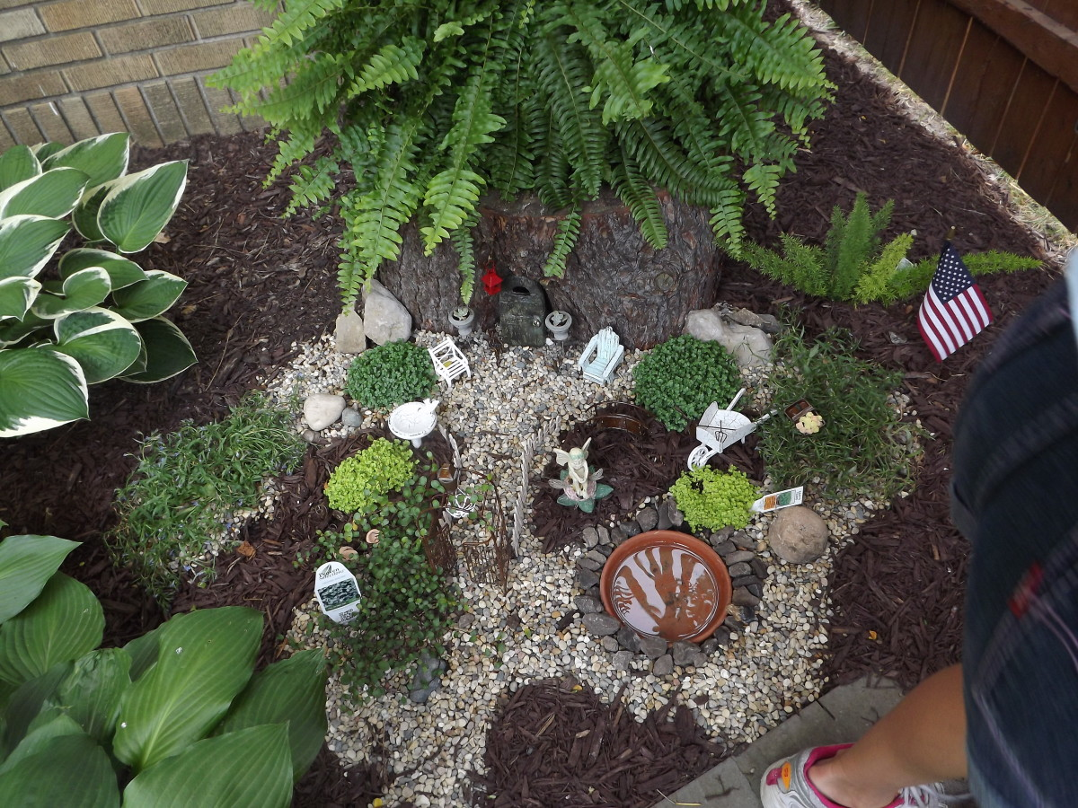 This is a fairy garden that I saw at a garden show. Children love these.