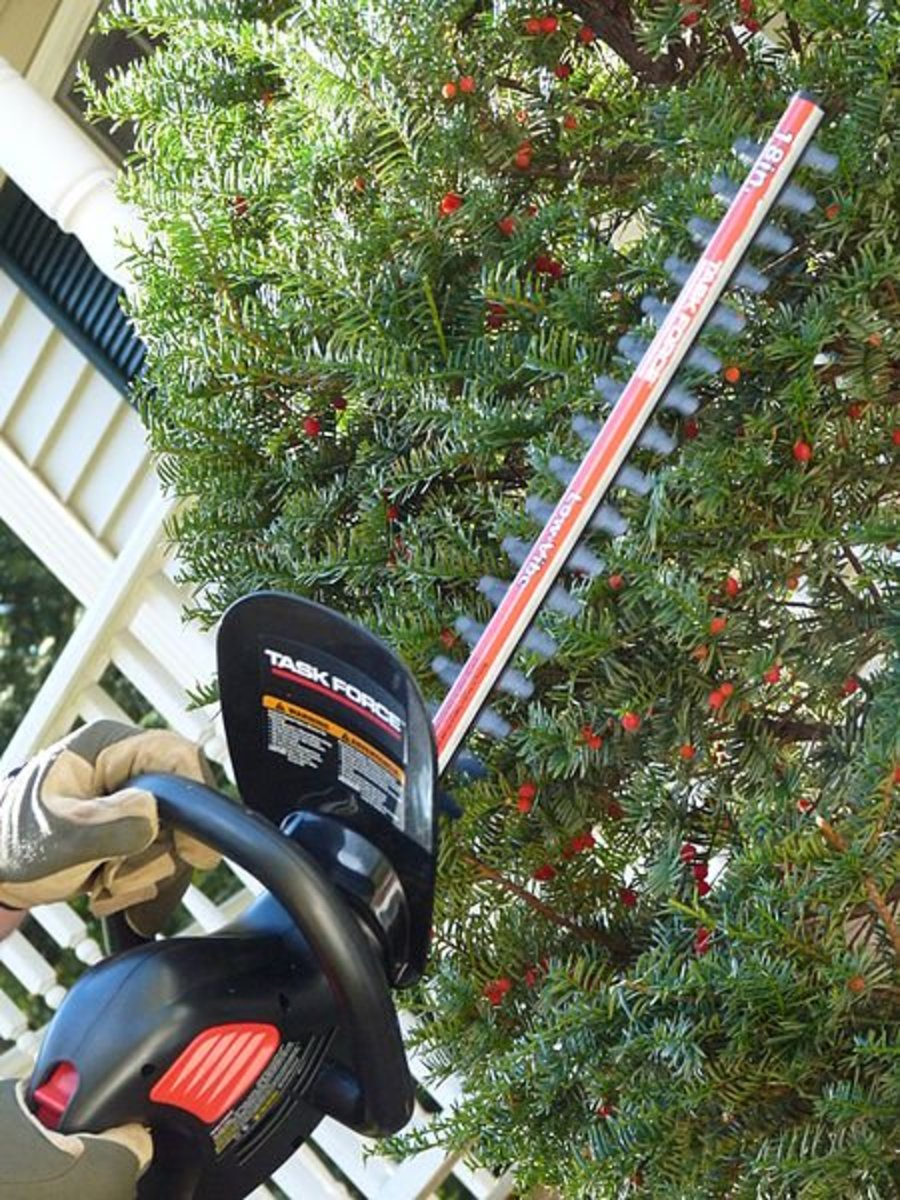 Gas powered hedge cutter/trimmer
