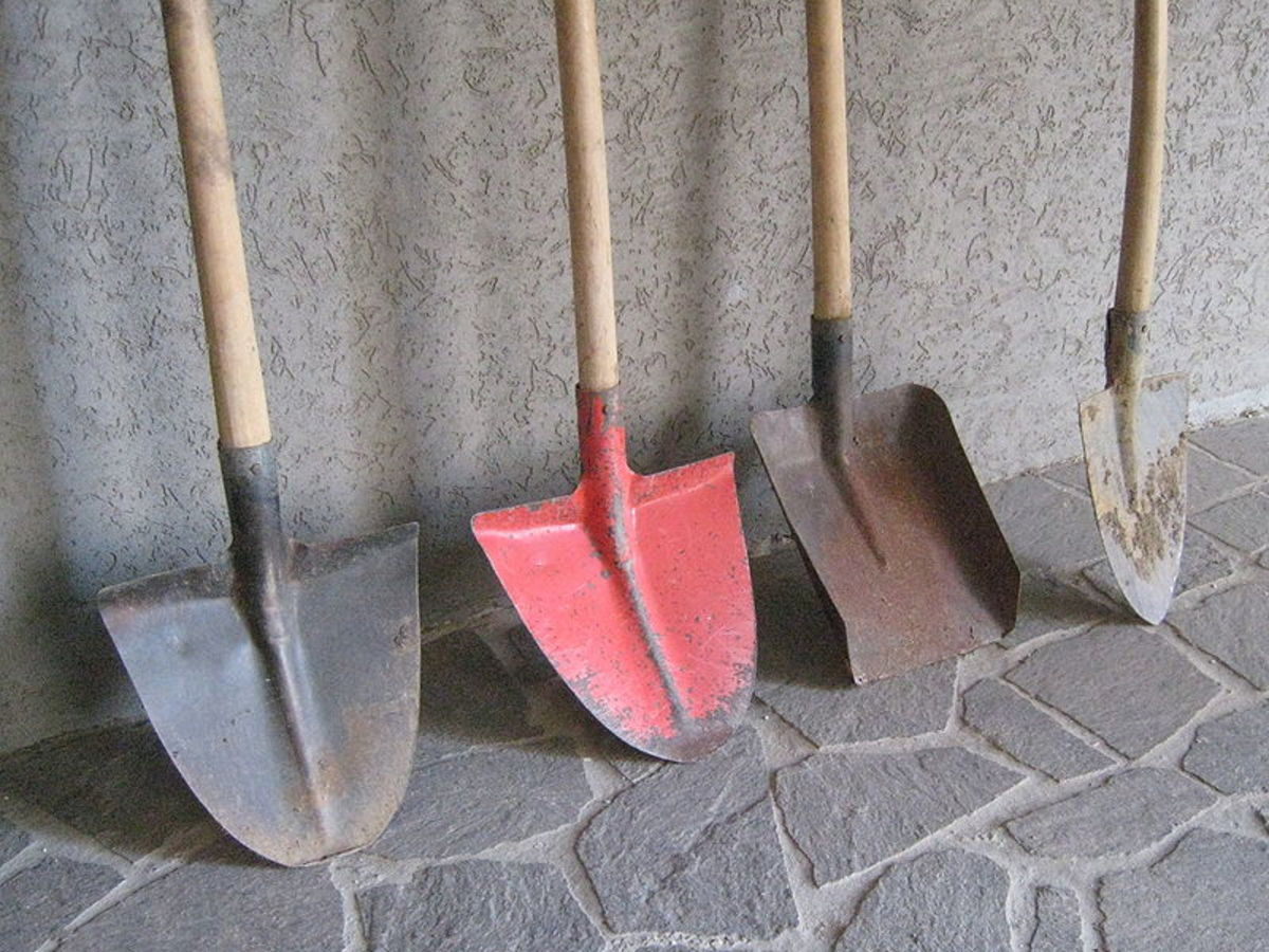 Various types of shovels