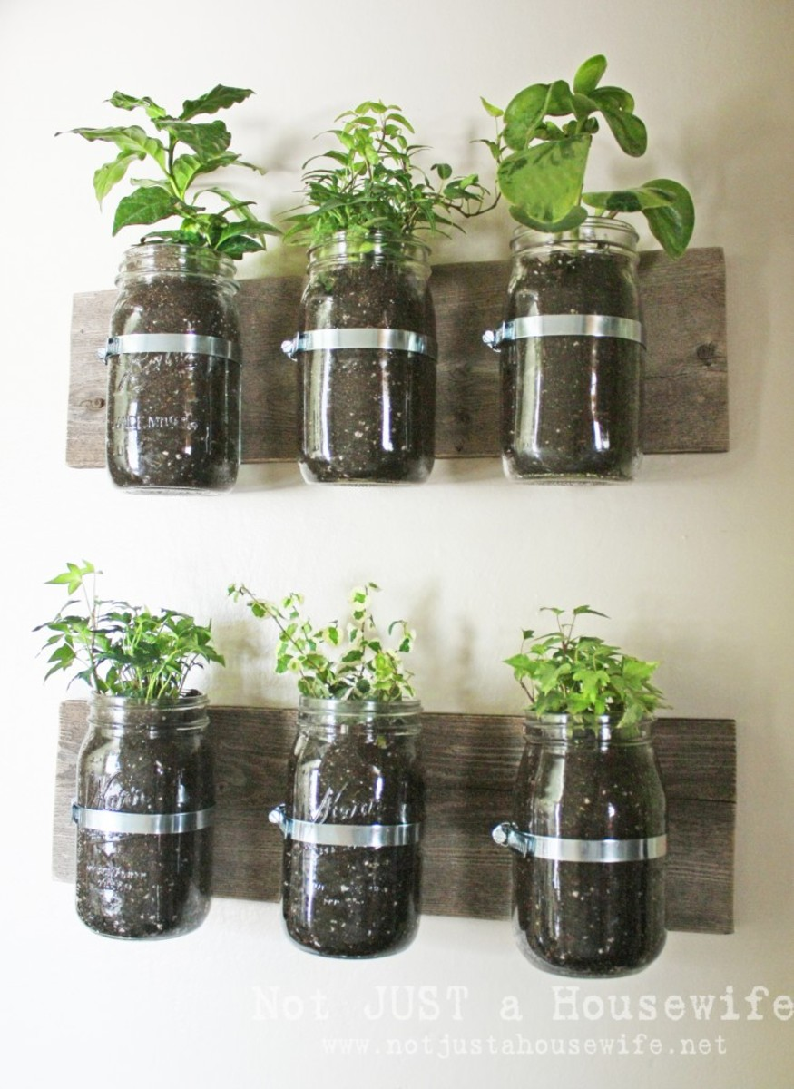 Repurposed Garden Planters Recycling Ideas for Indoor and Outdoor