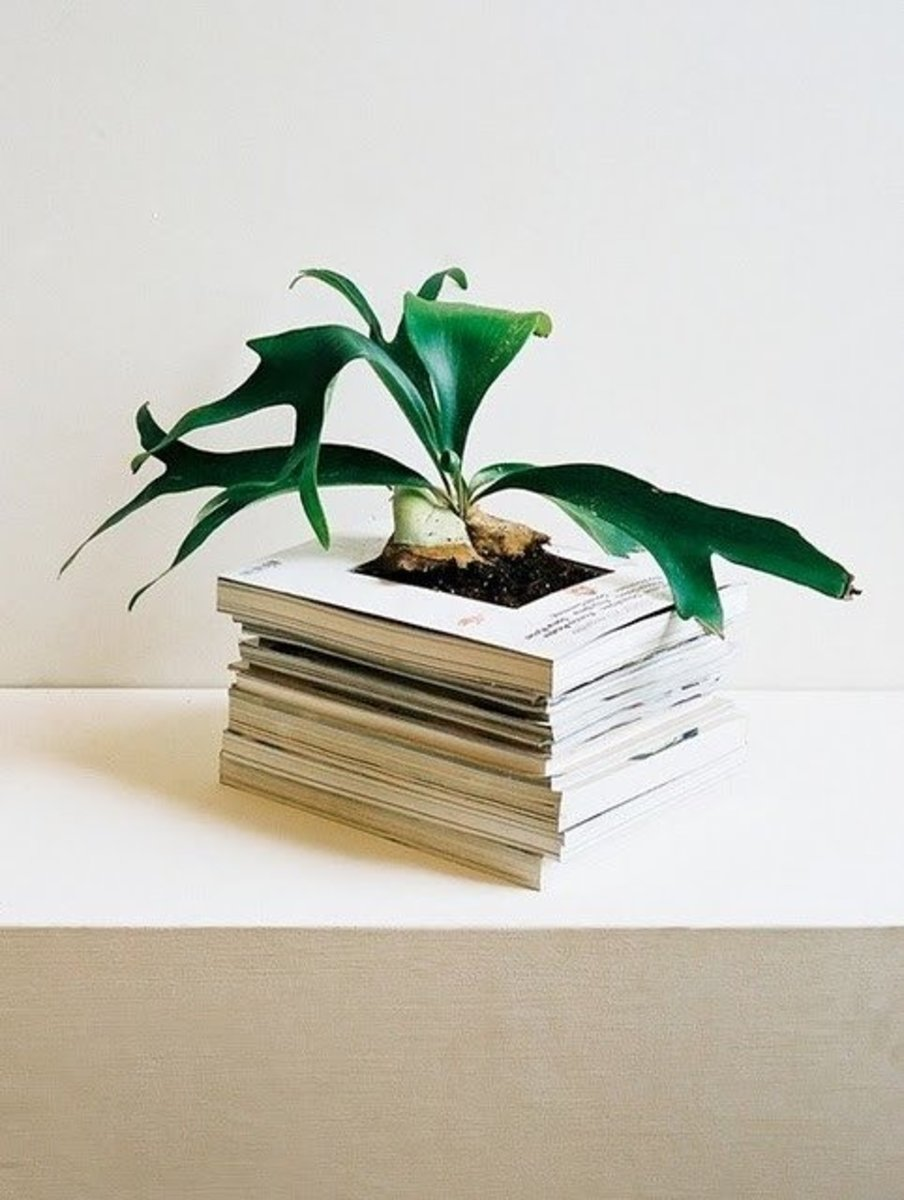 Repurposed Garden Planters: Recycling Ideas for Indoor and ...