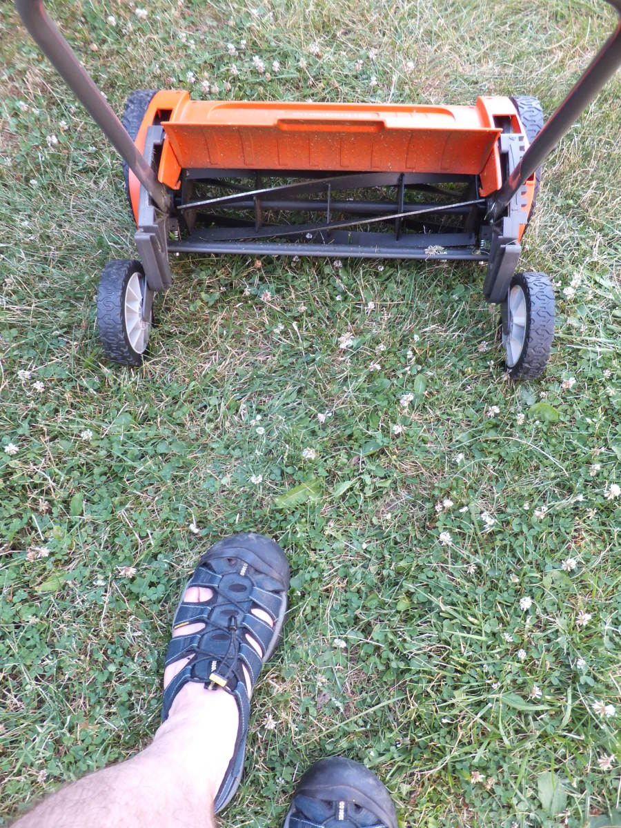 Wearing my Keen Newports while cutting the lawn with my reel mower.